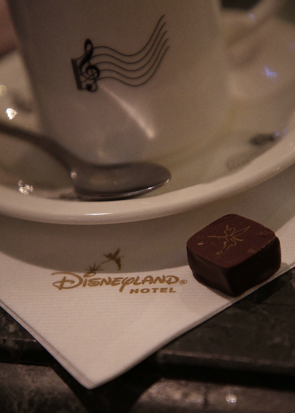 [Trip Report DLP] ÉPISODE BONUS : A Whole New World au Disneyland Hotel Fantasia_4-1